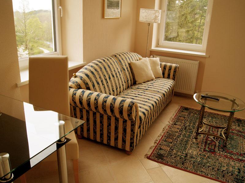 Wohnzimmer im Apartment Hotwagner