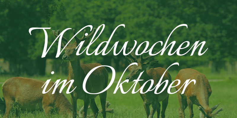 Wildwochen im Oktober